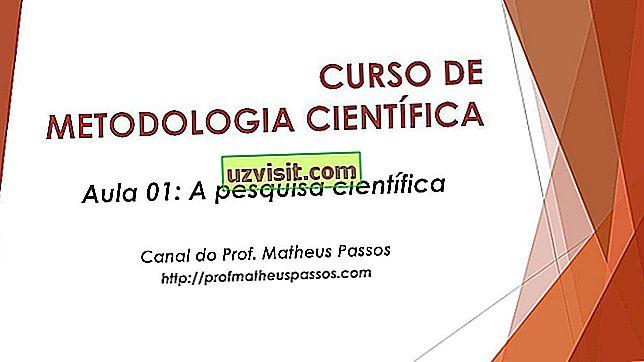 Wissenschaft - Wissenschaftliche Methodik