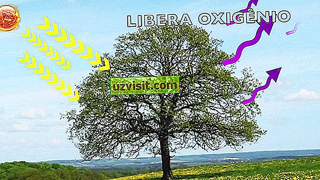 Oxy - khoa học