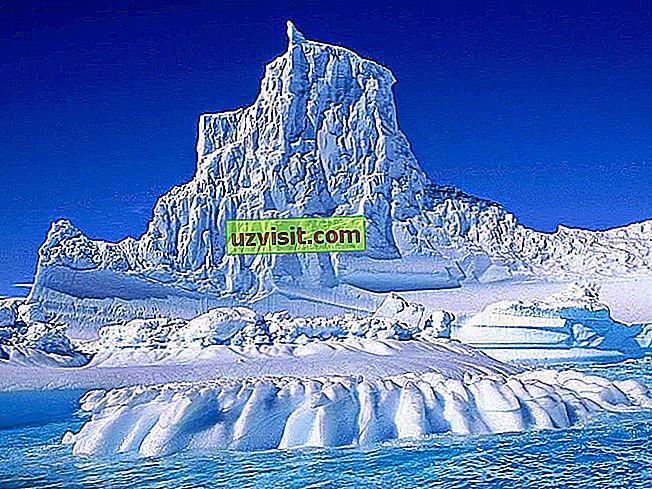 scienza - Clima polare