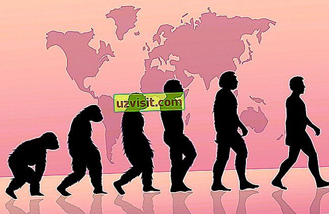 znanosti - Evolucionizem