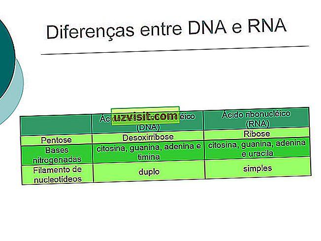 Verschil tussen Abiogenesis en Biogenesis - wetenschap