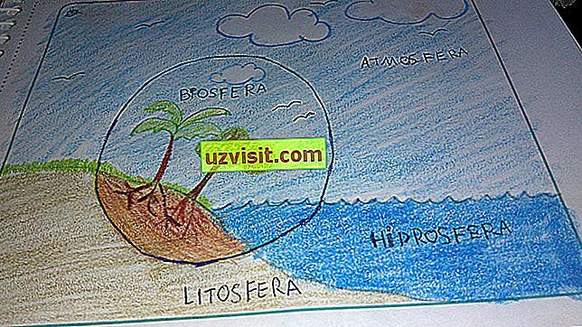 Litosferos reikšmė