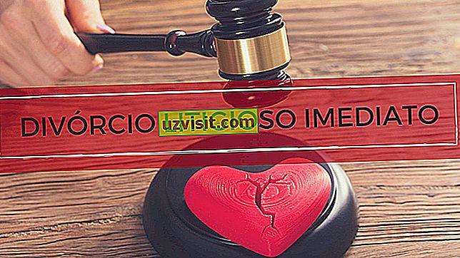 Развод парнични - право