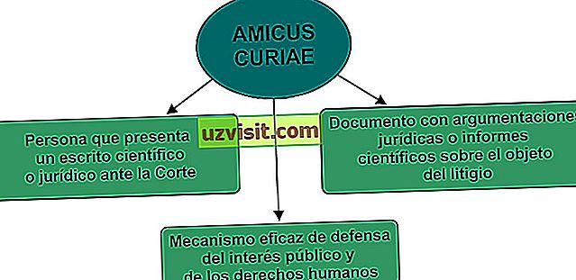 Amicus curiae - richtig