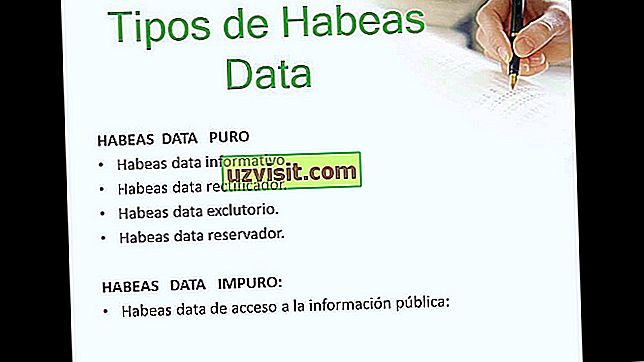 høyre - Habeas data