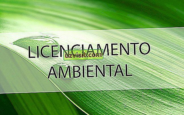 Umweltlizenzen - richtig