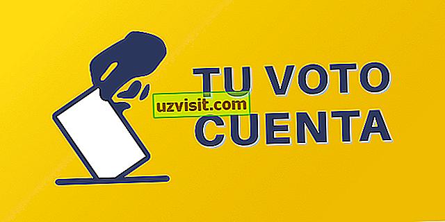 투표 - 권리