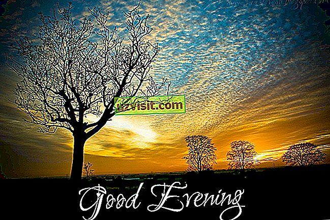 Jó estét