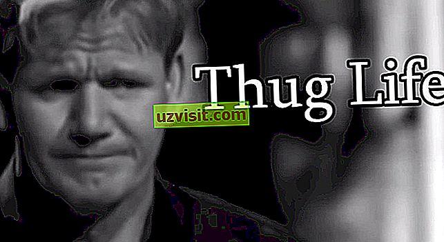 Thug život - výrazy v angličtině