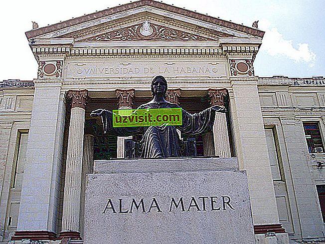 Alma mater - Latīņu izteiksmes