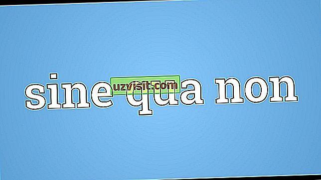 Latinski izrazi - Sine Qua Non