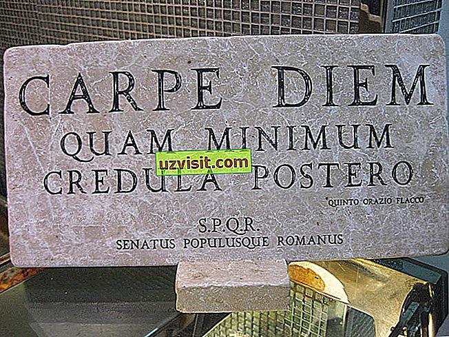 Carpe diem, minimālais kredula postero - Latīņu izteiksmes