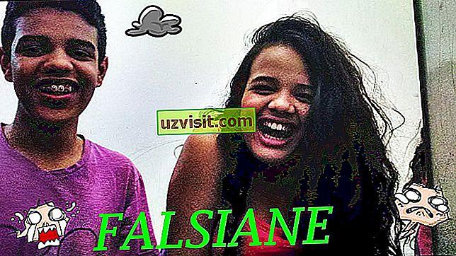 Falsiane - populære uttrykk