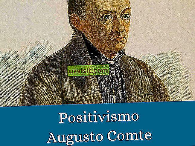 positivisme - filosofi