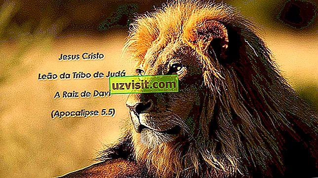 Júda oroszlánja