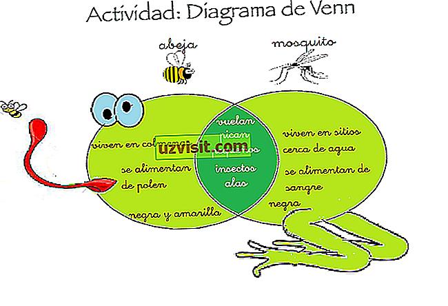 Venn diagramma