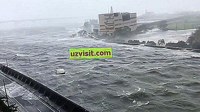 opći - tajfun