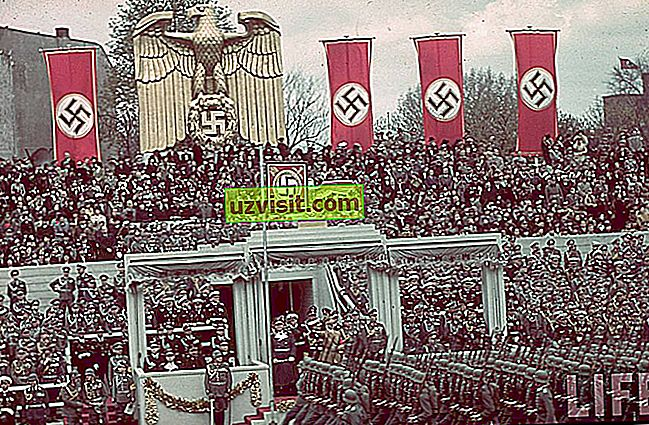 общ - нацизъм