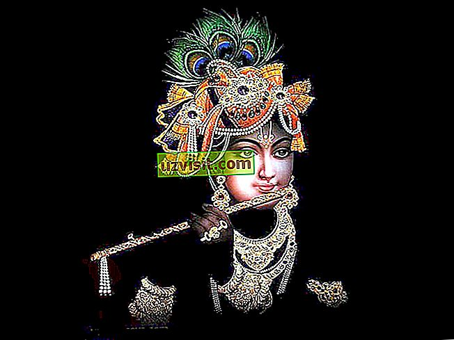 üldiselt - Krishna