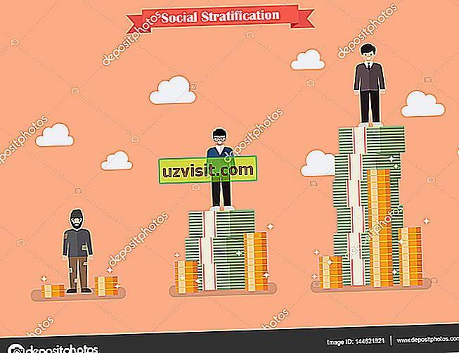 Социална стратификация