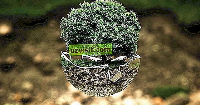 Types de ressources naturelles - général