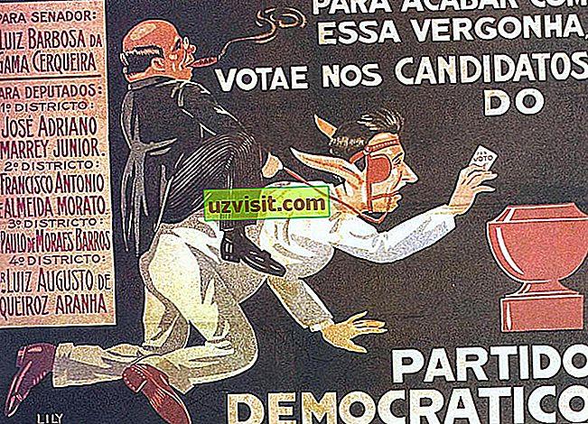 Vote Halter