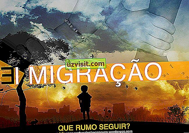 bendra - Imigracija ir emigracija