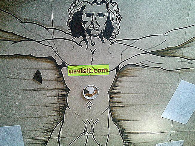 Vitruvian mees