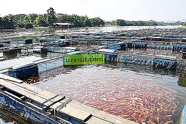 аквакултурите