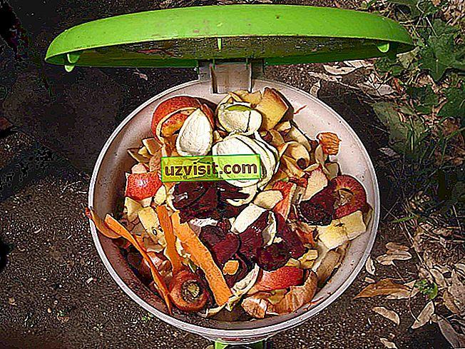 Organisk avfall
