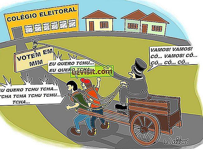 generale - Voto opzionale