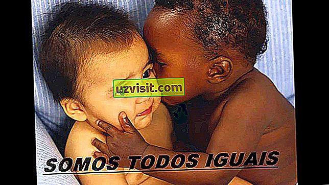 Prejudis Racial