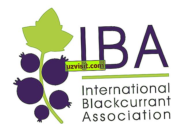 bendra - IBA