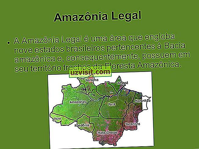 Legal Amazon