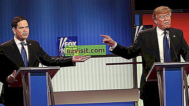 Razprava