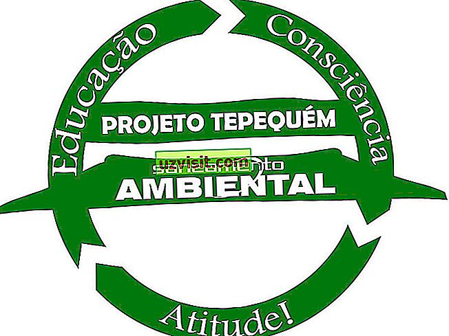 Aplinkos sanitarija