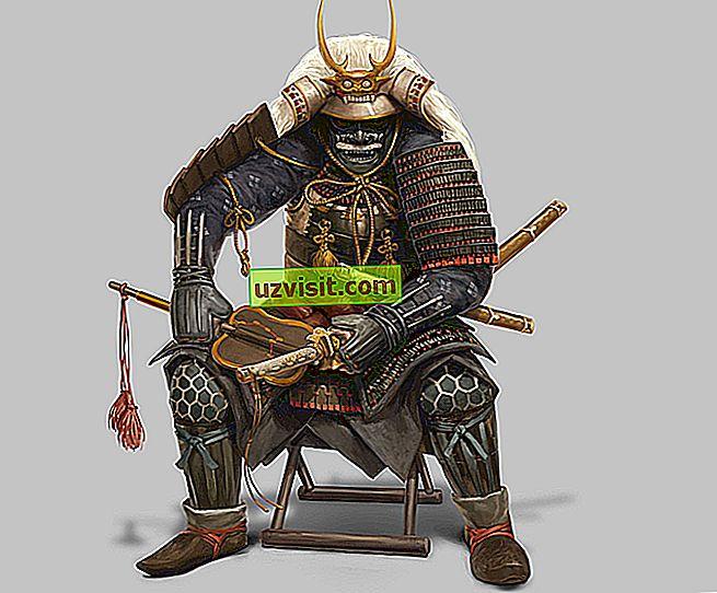 général - Shogun