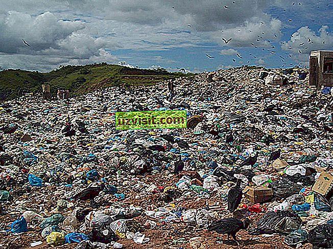 Kiinteät jätteet