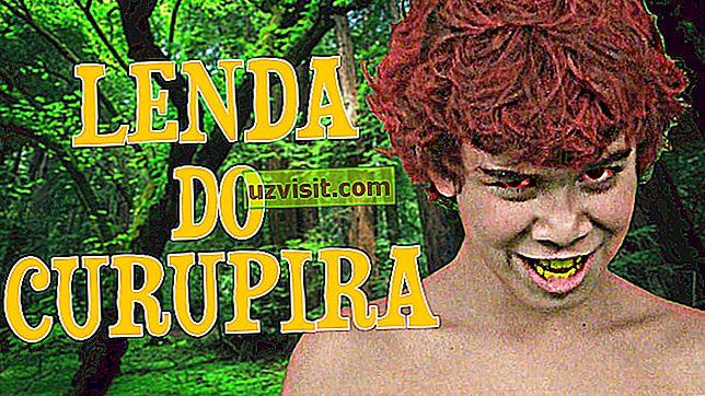 generelt: curupira