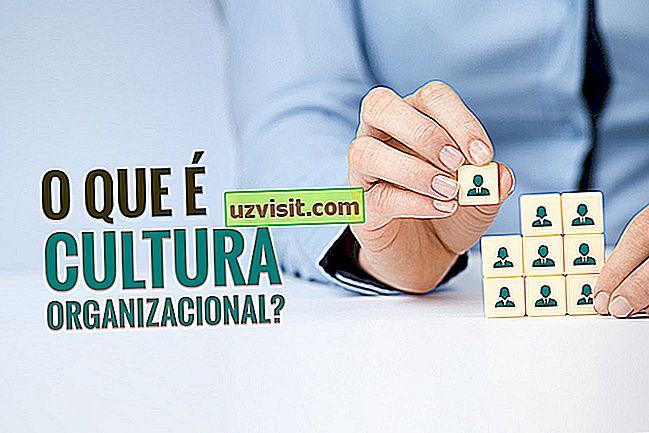 Организационна култура