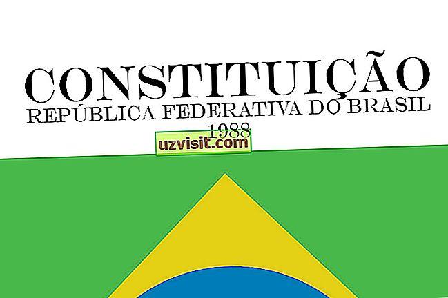 bendra: Federalinės konstitucijos reikšmė