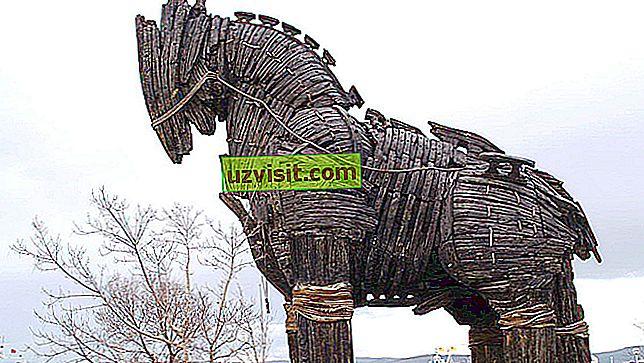 Тройски кон