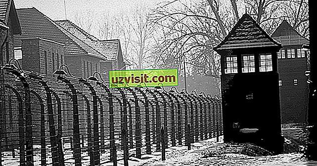 3 storie eroiche e stimolanti sull'Olocausto