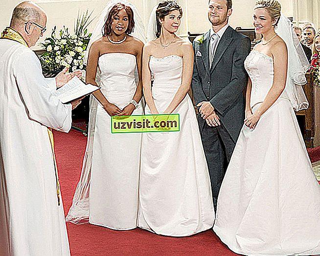 monogamija