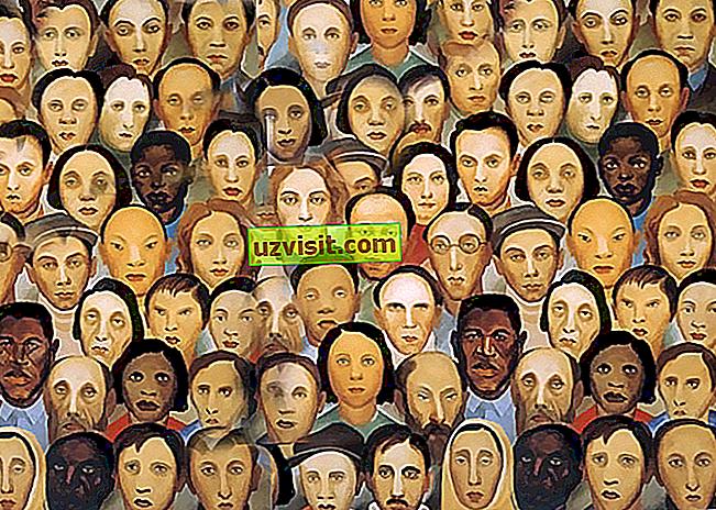 Kulturna raznolikost