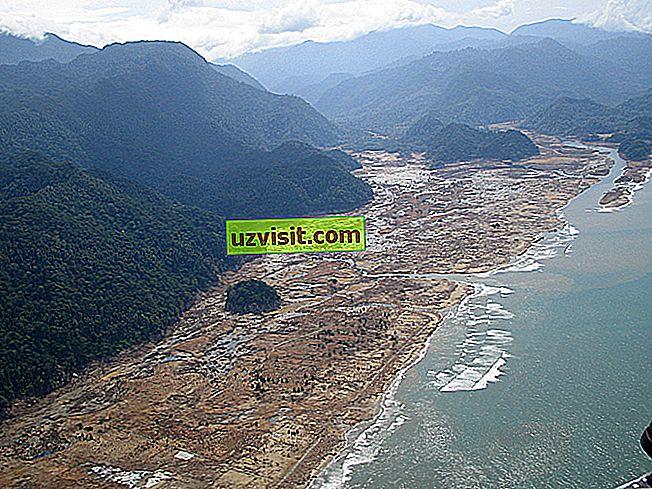 général: Tsunami