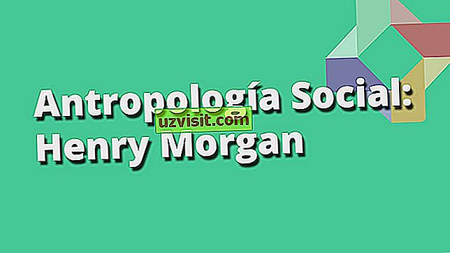 Sosial evolusjonisme