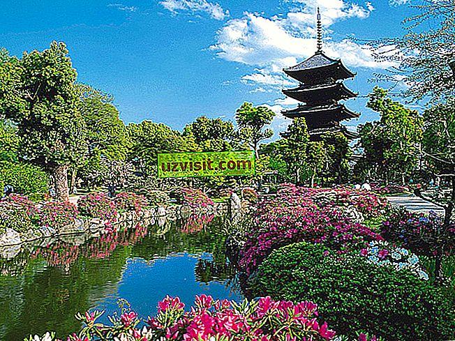 bendra - Kioto