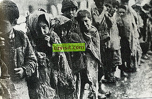 Genocīds