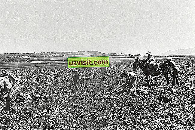 opći - Agrarna reforma